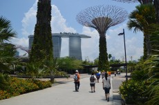 tour-singapore-2-fill-230x152