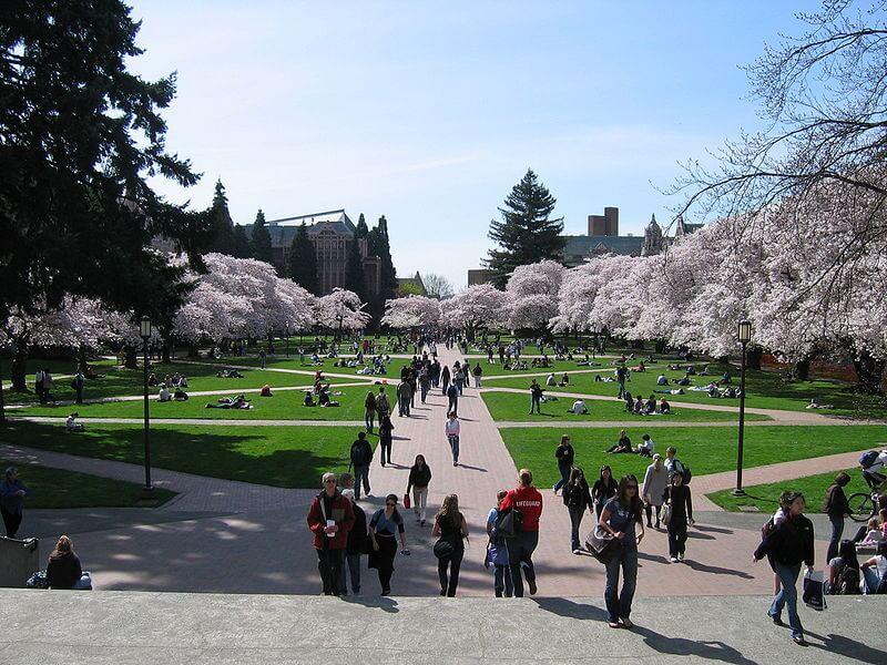 Cao đẳng cộng đồng – môi trường học tập quốc tế hot nhất hiện nay